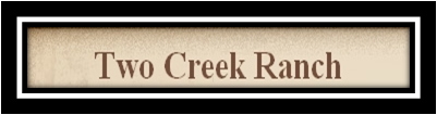 Two Creeks Logo